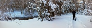 2015-02-08 Winter River Trail (6)