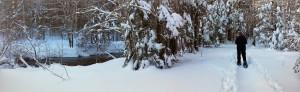 2015-02-08 Winter River Trail (6)